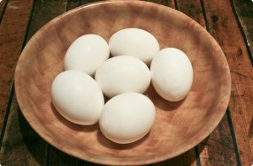 Blown Eggs (Eggshells)
