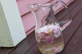 Beach Rose & Ginger Vodka