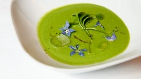 Chilled Wild Watercress Soup