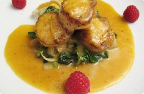 Seared Scallops w/ Orange Reduction & Fennel