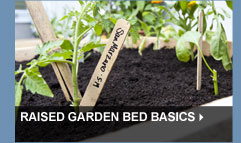 Raised Garden Bed Basics